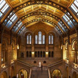 As maravilhas do Museu de História Natural de Londres