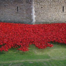 Uma data comemorativa diferente – conheça o Remembrance day em Londres!