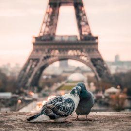 Paris: 5 Passeios românticos para casais apaixonados